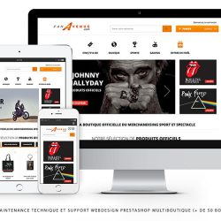 developpeur specialiste prestashop multiboutique