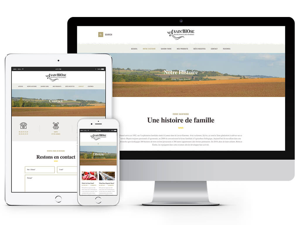 creation developpement site internet sur mesure landes aquitaine specialiste wordpress